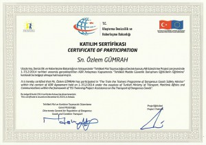 6_sertifika_6
